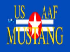 Free Play US AAF Mustang Mame Online any web browser